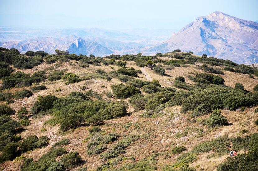 Des de la serra dels Plans: Alacant