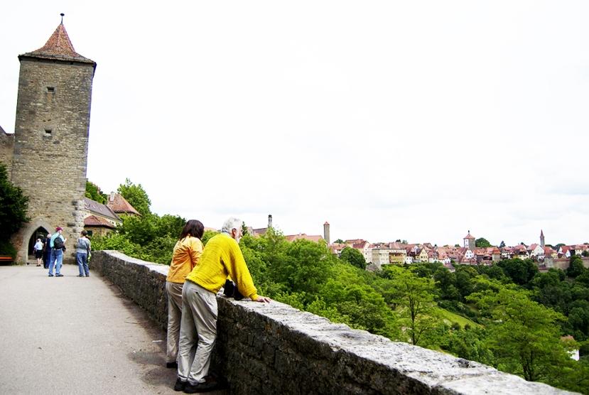 Una vista desde el Alter Burg
